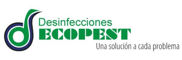 Servicios de desinsectación empresa especializada o remedios caseros contra plagas urbanas